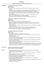 Veterinary Resumes Veterinary Resume Samples Velvet Jobs