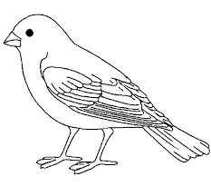 Coloring Picture Of A Bird Pages For Birds Free To Print Printable