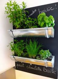 how to make an indoor herb garden. Interesting Herb Gutters Herb Garden  Fun And Easy Indoor Ideas And How To Make An