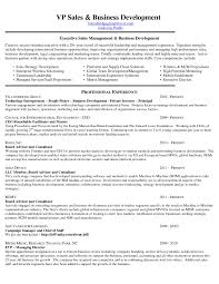 Entrepreneur Resume It Manager Resume Examples 100 Best Of Entrepreneur Resume New 17