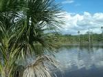 imagem de Lagoa do Tocantins Tocantins n-8