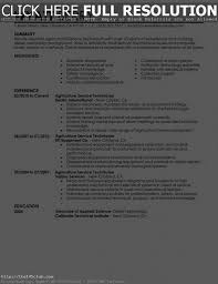 Help Making A Resume Building New Resume Therpgmovie 70