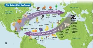 the columbian exchange overview imagine the americas out pigs and horses or even the common cold imagine out the potato the columbian exchange changed history and changed