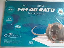 Repelente thursan para pombos balde 16kg. Ratoeira Adesiva Cola Pega Rato Visgo Quimiagri C 3 Unds Mercado Livre