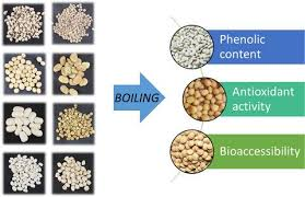Bioaccessibility and antioxidant activity of phenolic compounds in cooked  pulses,International Journal of Food Science & Technology - X-MOL