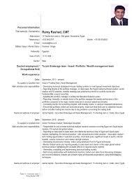 Technical Skills Cv Technical Skills And Competences Cv Examples Major