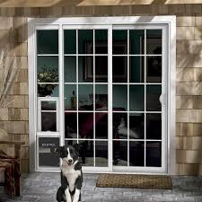 dog door sliding glass patio doggie surprising with pet photos
