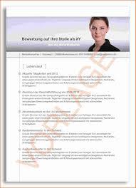 12 Professioneller Lebenslauf Vorlage Kostenlos Transition Plan