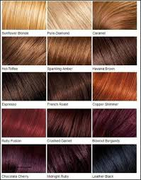 Hair Rinse Color Chart 37 Skillful Ginger Hair Colours Chart