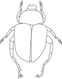 Small Picture Printable Beetle Coloring Pages Kids Coloring Pages Pinterest