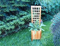Small Picture How To Build A Garden Trellis From Start To Finish