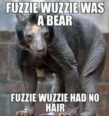 Weknowmemes Hair No - Shaved Wuzzie Bear Had A Fuzzie Was