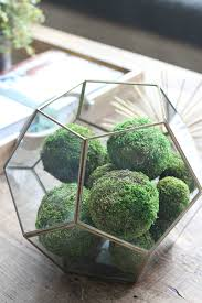 Decorating With Moss Balls Transitional Living Room The House of Silver Lining 12