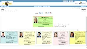 Succession Planning Chart Succession Planning Product Information
