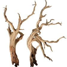 Mountain Driftwood Branches, 10