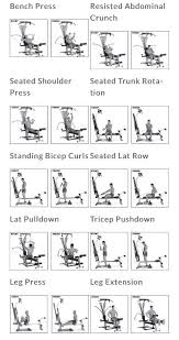 Total Gym Wall Chart Download Image Result For Bowflex Workout Chart Free Download Bow