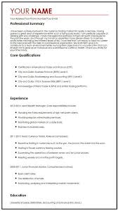 Examples Of Professional Skills Professional Cv Sample Myperfectcv