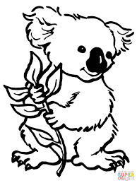 Small Picture Koalas coloring pages Free Coloring Pages