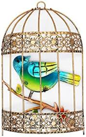 What to put in a decorative bird cage. Amazon Com Votenvo Galvanized Colorful Art Birdcage Wall Decor Metal Bird Cage Wall Art Plaque Metal Iron Decorative Painting Random Delivery Everything Else
