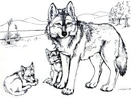 printable animal coloring pages valid printable free wolf coloring pages for s