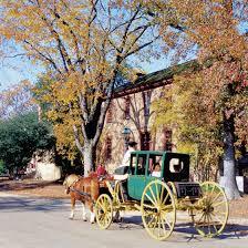 vacations to busch gardens in williamsburg virginia