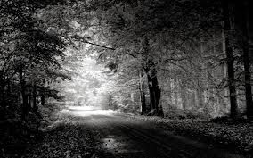 black and white nature wallpaper. Wonderful Nature Full HD Black White Nature Wallpaper Inside And E