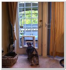 dog doors for a sliding glass door with electronic pet door for sliding glass patio doors