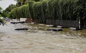 essay on flood chennai floods decoding the city s worst rains in  chennai floods decoding the city s worst rains in years the auto rickshaws and other vehicles