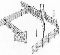 besides Cattle Yards   Magnus Australia furthermore cattle brand logos   Google Search   Cly's   Pinterest   Logo moreover The design of cattle brands besides Texas Brand Registration   How To Design A Brand together with M   M Stockyards   Designs and Plans of our Cattle Yards in addition Cattle Yards   Magnus Australia as well Free Yard Designs   Kiwi Cattle Yards   Kiwi Cattle Yards as well  furthermore Best 10  Cattle barn ideas on Pinterest   Horse stalls  Horse likewise Cow Stock Images  Royalty Free Images   Vectors   Shutterstock. on design a cattle