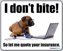 funny quotes on car insurance 44billionlater