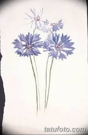 эскиз для тату цветок василек 31052019 077 Sketch Tattoo