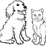Small Picture Dog Cat Coloring Pages Printable Kids Colouring Gekimoe 103573