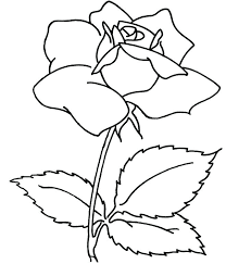 big coloring pages of flowers chic flower coloring pages for s com large coloring pages