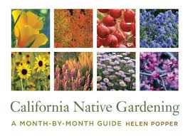 california native plants for the garden. Helen Popper Will Join Us To Discuss Her New Book, The First Month-by-month Guide Gardening With Native Plants In California, Our Gorgeous State Which California For Garden O