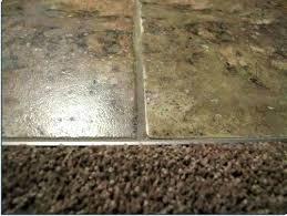 carpet tile transition carpet to tile transition strip installation rubber transition carpet to tile transition strip