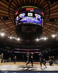 ufc 217 workouts were held at madison square garden esther lin mma fighting