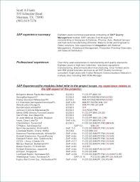 Mechanic Resume Skills From Auto Mechanic Resume Template Awesome