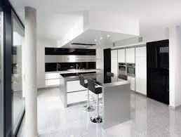 Modern Kitchen Cabinets Miami Kitchen Kitchen Cabinet To Go Kitchen Captivating Kitchens To Go