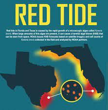 Gulf of Mexico/Florida: Harmful Algal ...