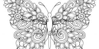 Free Butterfly Coloring Pages For Adults Design And Ideas Page 0