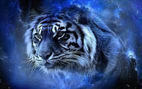 Lightning Cool Tiger Wallpapers