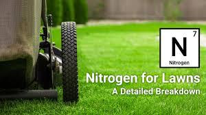 Nitrogen For Lawns A Detailed Breakdown Lawnstar