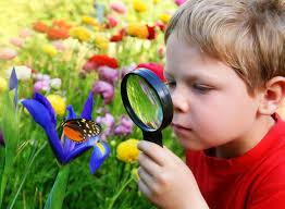 children garden. garden, kid\u0027s kids\u0027 children\u0027s themed theme children garden