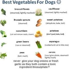 Best Vegetables For Dogs Make Dog Food Vegan Dog Food
