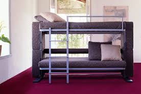 Image of: Modern Loft Bed with Couch Underneath