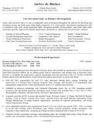 Business Development Resume Objective Executive Sample Resume Tax