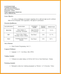 Resume For Professional Job 99 Sample Professional Job Interview Resume Format For Simple Step