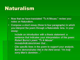 of mice and men paper assignment ppt video online  26 naturalism