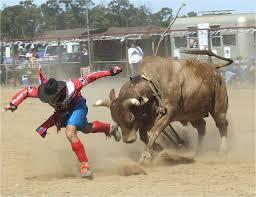 rodeo bull charging. Simple Rodeo Rodeo Bull Charging  Google Search With Rodeo Bull Charging Pinterest