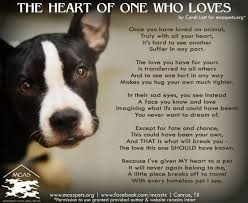 Rescue Dog Quotes Custom Quotes About Dog Rescue 48 Quotes